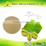 Factory 100% Natural Low Weight Medicine Green Coffee Extract Pure Chlorogenic Acid Arabica Green Coffee Bean Extract