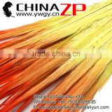 ZPDECOR Factory Wholesale Wonderful Quality Best Dyed Orange Yellow Ombre Ringneck Pheasant Tail Feathers for Decorations