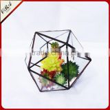 Factory direct sales indoor&outdoor air plant hanging glass geometric terrarium in black color
