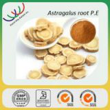 High quality Chinese herbal medicine 50% polysaccharides high quality astragalus extract powder
