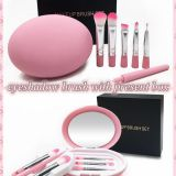 5pcs Travel Portable Eyes Brush Set Makeup Brush Set for eyes with box