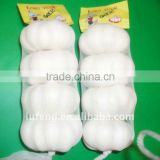 Chinese White Frozen Garlic
