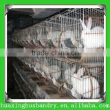 Wholesale !! rabbit farming cage/poultry equipment(professional factory)