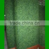 Artificial boxwood hedge/artificial Melon Grass hedge/ boxwood fence
