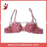 Factory OEM ODM isexy bra for girl sexy underwear push up bra with best price