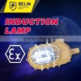 Electromagnetic induction lamp, energy saving explosion proof light