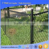 Trade assurance China Supplier Galvanized and PVC Coated Diamond Mesh/ chain link fence extensions