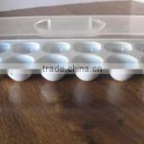Refrigerator Egg Storage Tray Bin Holder Container White Fridge Holds 12 Eggs