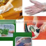 Clear Plastic PE Gloves disposable plastic gloves