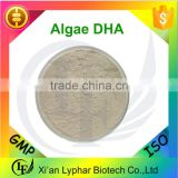 Top Quality Schizochytrium Algae DHA Powder