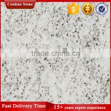 plateau snow granite white slab with black lines