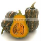 FRESH PUMPKIN GOOD TASTY VERY COMPETITIVE PRICE!!!
