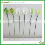 wholesale top quality real touch mini calla lily in white green
