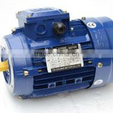 three phase electric motor,aluminum shell and copper wire, Y2 series Horse B3/B5/B14