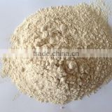 75% food grade Vital Wheat Gluten