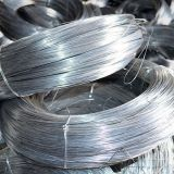 BWG22 Electro Galvanized Iron Wire for Construction