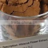 100% Pure & Natural Hibiscus Rosa Sinensis dried flowers extract powder