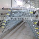 automatic quail bird layer cage system                                                                                                         Supplier's Choice