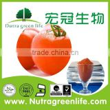 Free sample made in China natural anti-oxidant for food and beverage high quality tomato lycopene extract powder                                                                         Quality Choice