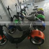 2017 City mobility citycoco 1000W brushless adult electric motorcycle 2 wheels fat tire electric scooter