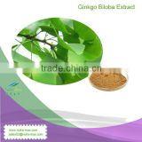 NutraMax Supplier--Pure Ginkgo Biloba Leaf Extract Powder 24%/6%/ USP32