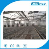 AceFog Wall Mounted Exhaust Fan Ventilation Cooling System For Industry Greenhouse Poultry