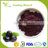 Kosher certified weight loss Acai berry extract powder Acai berry juice powder