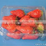 Strawberry PET plastic clear packaging container                                                                         Quality Choice