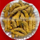 TURMERIC FINGER ORIGIN VIETNAM WITH BEST PRICE!