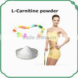 bulk l-carnitine powder to lose weight