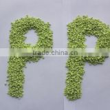 reach grade pp granules, injection molding pp pellets