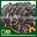 Good Quality Hulled Sunflower Seeds Kernels