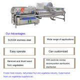 Fruit vegetable washing machine for core vegetable