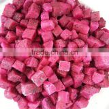 Vietnam High Quality Frozen Dragon Fruit/ Pitaya Fruit