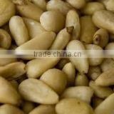 Pine nuts and other nuts at good prices