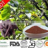 High quality Prunus African extract, Pygeam Africanum Extract Powder, Pygeum Extract