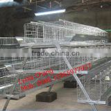 Chicken farm equipment / chicken breeding cage / 3 layers Chicken cage (lydia : 0086-15965977837)