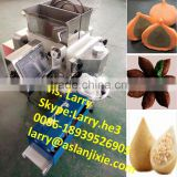 Spanish churros making machine/kndele encrusting machine/coxinha encrusting making machine