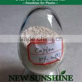 Chinese manufacturer captan fungicide