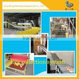 Inquiry About automatic chicken layer cage for sale in philippines