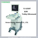 Cheap trolley ultrasound Scanner for obsterics