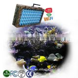 Chinese 120W programmable WiFi control akvaryum Led cylinder Aquarium plant lighting Reef Tank sunrise sunset Light