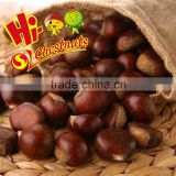 Hebei Fresh Chestnuts--New Crop and best quality
