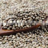 Factory Wholesale Hemp Seed in Bulk