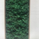 Preserved Moss Table Numbers for Weddings, Events, Nurseries