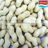bulk raw organic peanut in shell