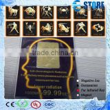 2015 New Bio Energy Radiation Shield Scalar Energy Anti Radiation Sticker                                                                         Quality Choice