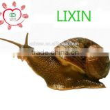 best selling beauty product skin care whitening product raw snail extract Helix Aspersa Snail Extract protein powder