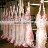 Halal Fresh/Frozen Sheep/Goat/Lamb Meat/Carcass