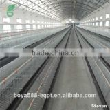 poultry layer broiler rearing cage for Zambia chicken house                                                                         Quality Choice